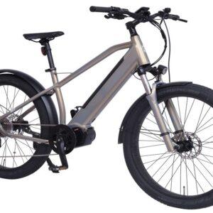 E-bike Dolphin 120 Nm 48V, 672 Wh
